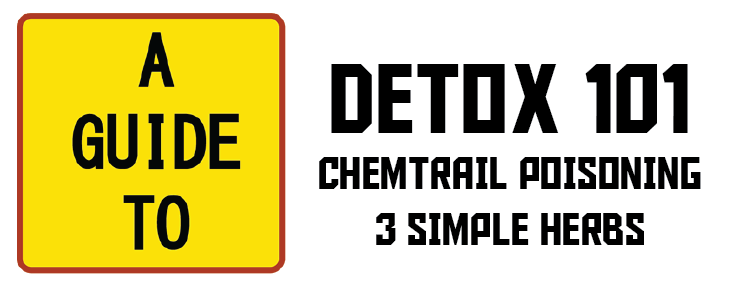 Chemtrail Poisoning: 3 Natural Herbs That Protect Against and Detox Your Body From Heavy Metals