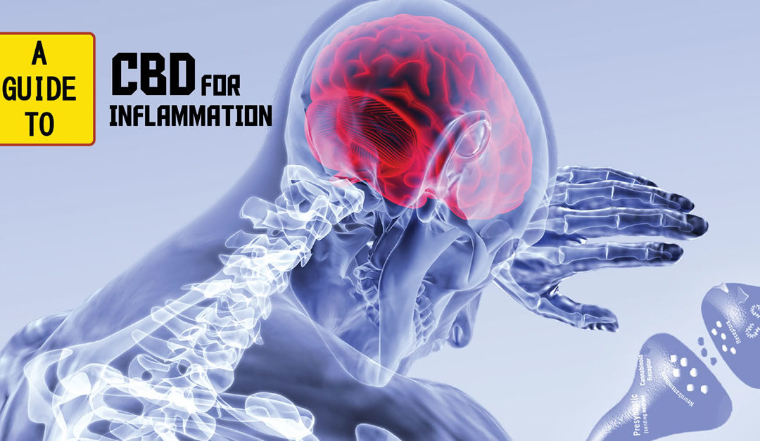 Role of the Endocannabinoid System in Inflammation