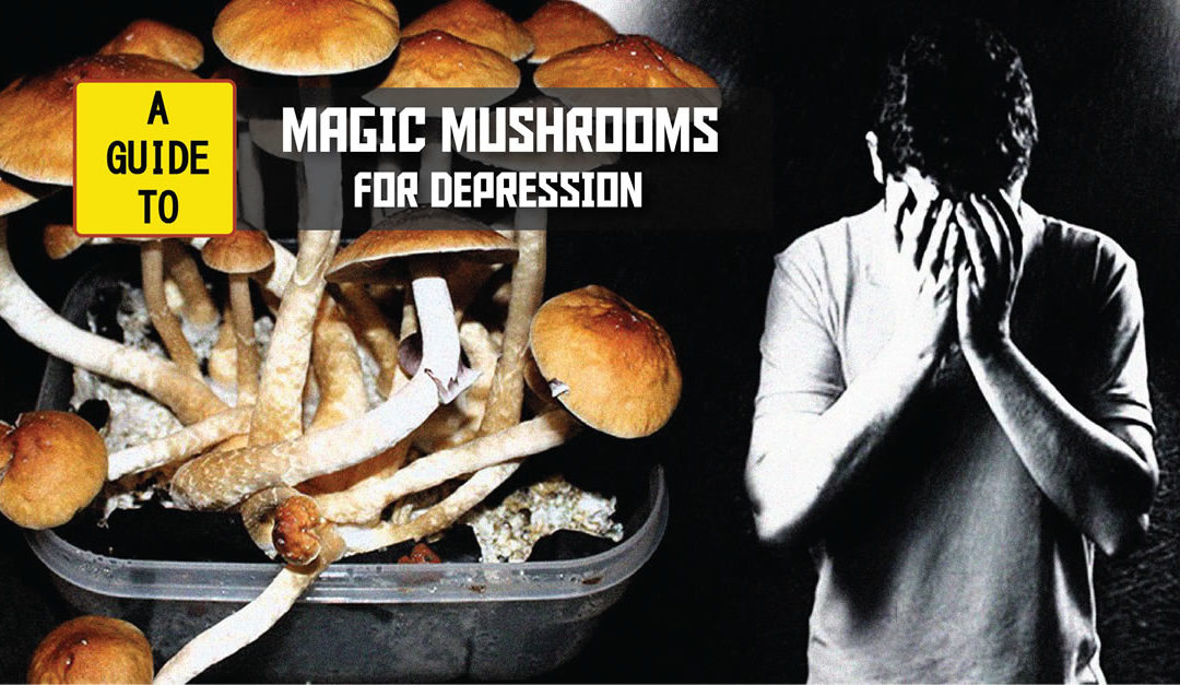 "Study Suggests Psilocybin Can ""Reset"" The Brains Of Depressed People"