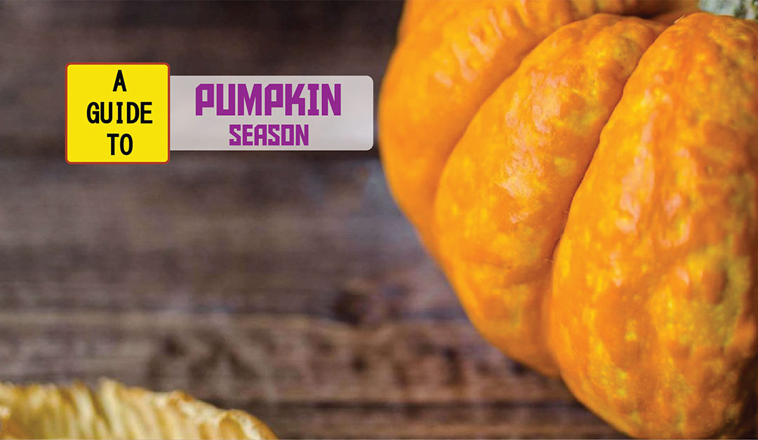 It's Pumpkin Season! How To Stay Healthy All Autumn Long