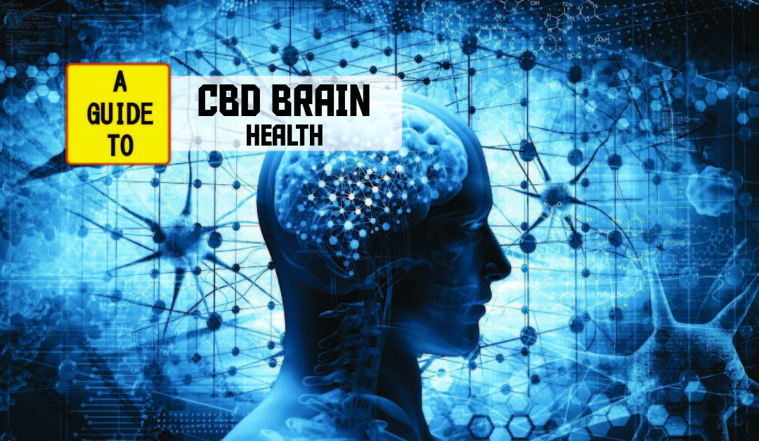 CBD May Alleviate Seizures And Help With Neurodevelopmental Conditions