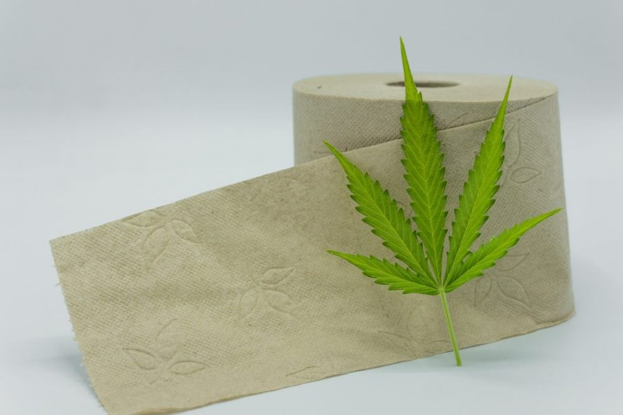 Hemp Toilet Paper: How You Wipe Your Bottom Could Change The World